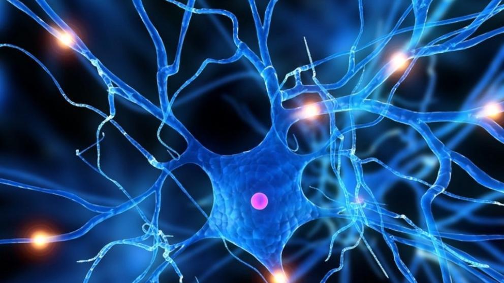 Qué es la Bioneuroemoción® y cómo ha cambiado mi vida