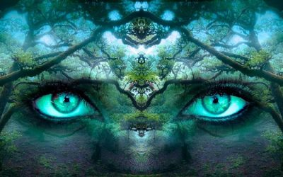 El poder de la percepción: ¿cómo deshacer las interpretaciones subjetivas?