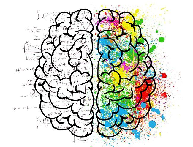 Los dos lados del cerebro