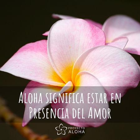 Proyecto Aloha significado